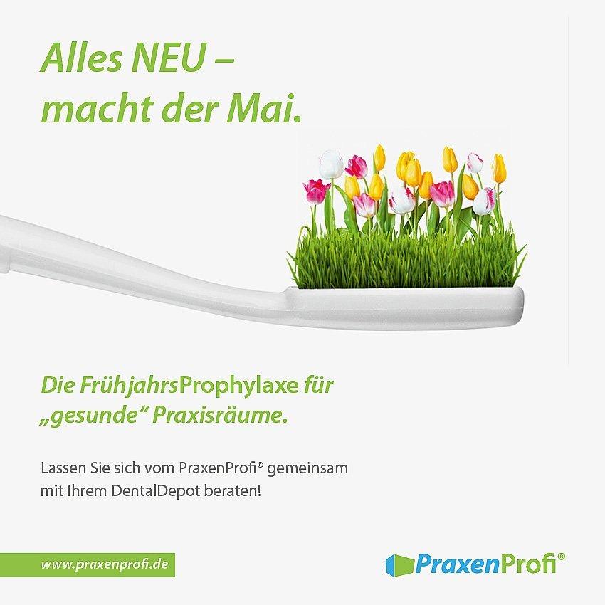 Anzeige PraxenProfi Frühjahrsputz