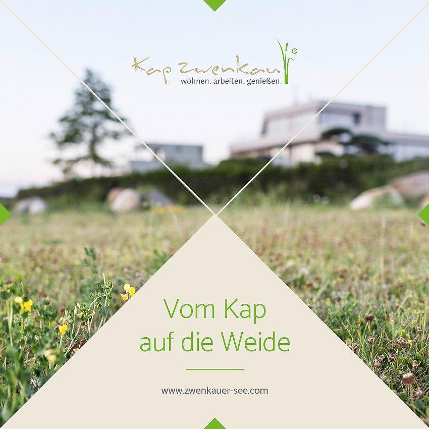 Gestaltungskonzept Saechsisches-Seebad Zwenkau
